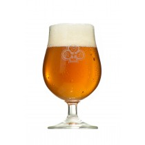 Dolden Tasting Glas 0,3l